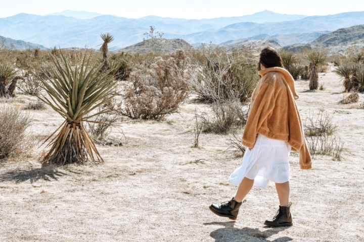 The 3 Places you Have to Visit on your Next Trip to JoshuaTree